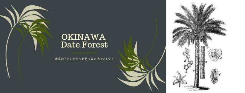 【国際デーツ協会公式通販ショップ】OKINAWAに日本で初めてのデーツの森を!